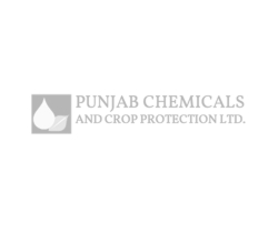 PUNJAB CHEMICALS